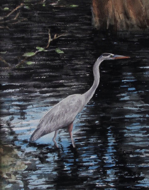 Great Blue Heron by Doug Jamieson