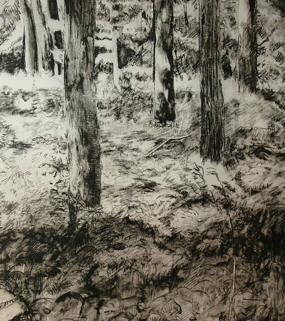 Detail, My Woods July by Richard Kathmann